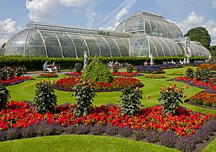 310px-Flowers_in_front_of_the_Palm_House,_Kew_Gardens