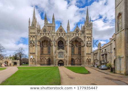 peterborough-cathedral-church-st-peter-450w-177935447